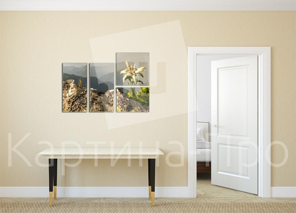 Модульная картина Горный эдельвейс от Kartina-Pro
