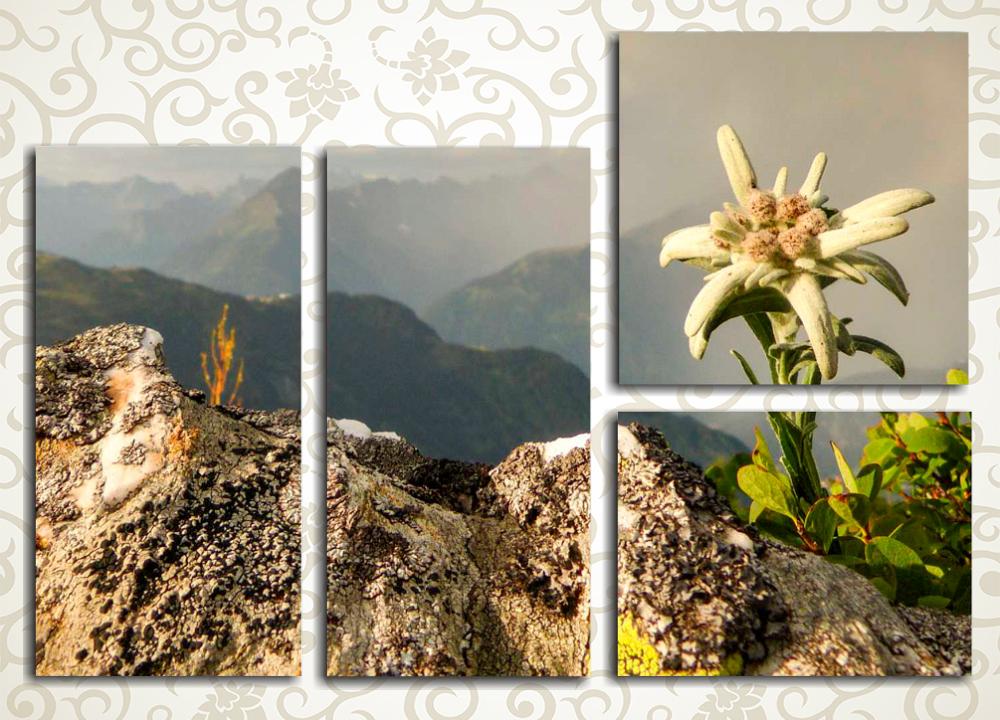 Модульная картина Горный эдельвейсУтонченный и эстетичный сюжет модульной картины «Горный эдельвейс» подчеркнет изысканный вкус хозяйки дома. Это полотно изображает прекрасный цветок на высокогорной скале и уходящие в туманную даль вершины. Картина состоит из 4 модулей разной формы, она имеет общую прямоугольную горизонтальную компоновку, что позволяет без затруднений разместить ее на длинной стене помещения. Благодаря применению высокотехнологичных латексных красок изображение не потеряет первозданной яркости и сочности цветов.<br>
