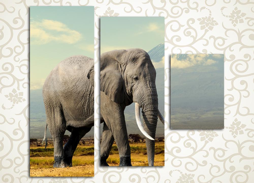Модульная картина Могучий самецМодульная картина «Могучий самец» придется по душе не только любителям живой природы. Она изображает внушительного африканского слона на фоне саванны и далеких гор. Полотно выдержано в спокойных, приятных цветовых тонах. Оно станет отличным украшением интерьера прихожей, гостиной, зала, спальни, а также кухни. Изображение выполнено высокотехнологичными латексными красками.<br>