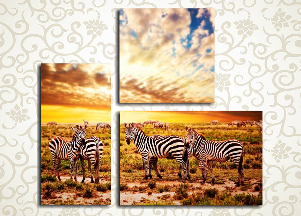 Модульная картина Закат над Африкой