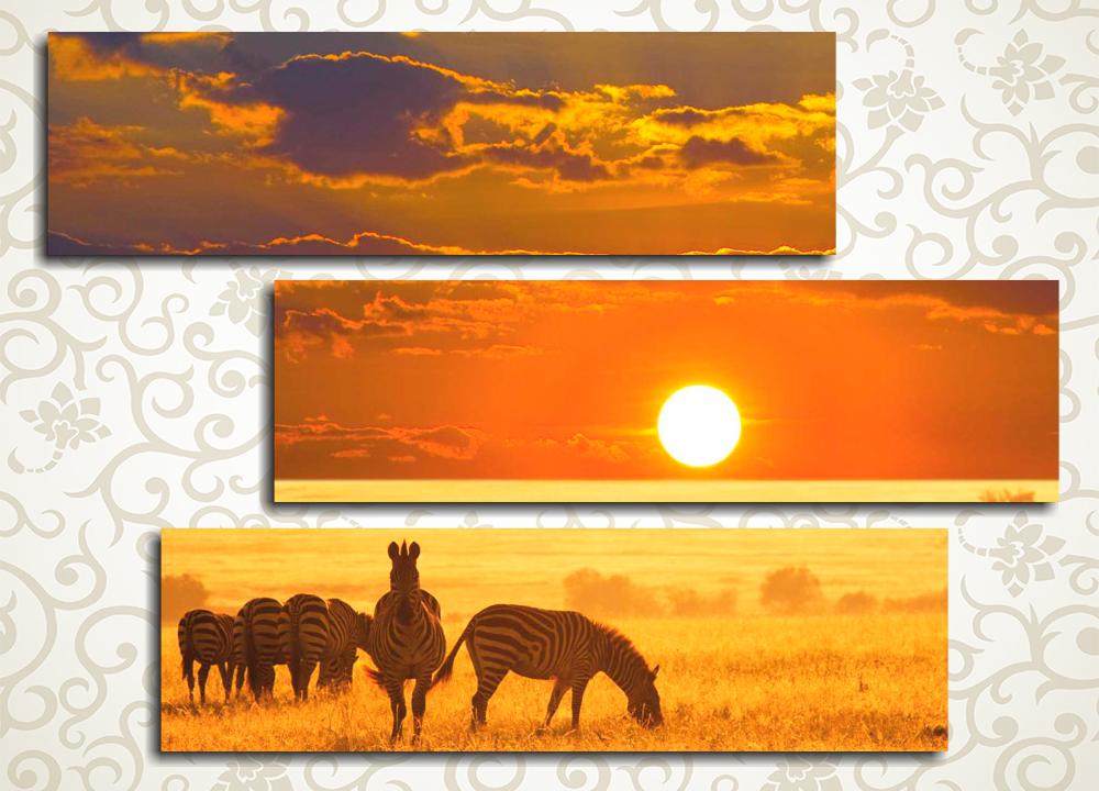 Модульная картина Африканский закат