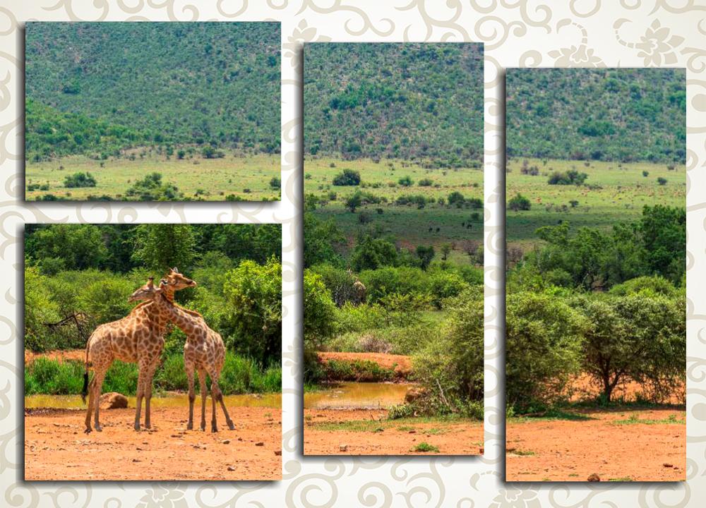Модульная картина Африканский пейзаж