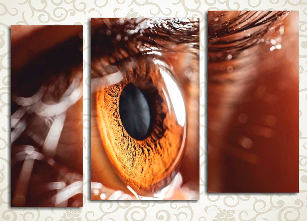 Модульная картина Большие глаза