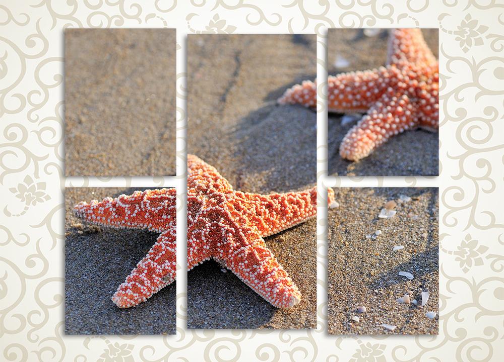 Модульная картина Звезды на берегу