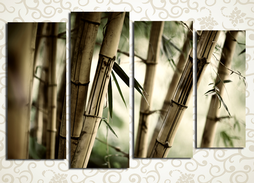 Модульная картина Бамбуковый лес