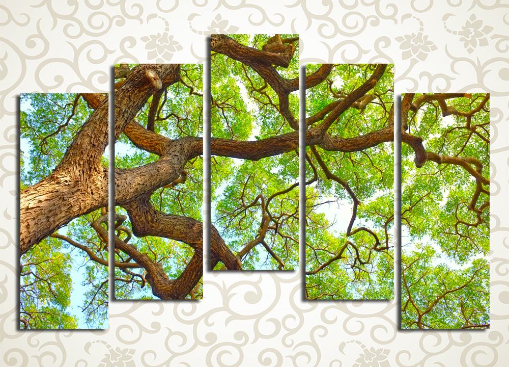 Модульная картина Ветви дерева на фоне неба