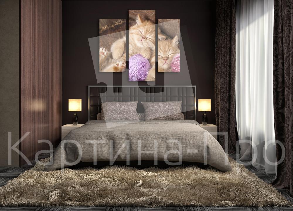 Модульная картина Сонные котята от Kartina-Pro