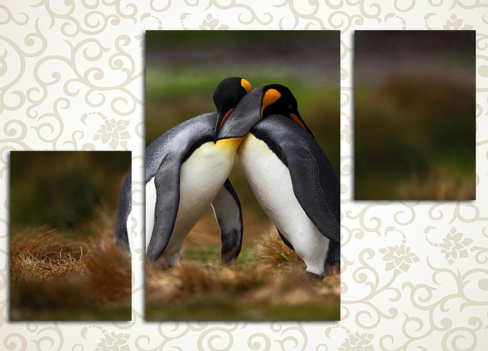 Модульная картина Влюбленные пингвины