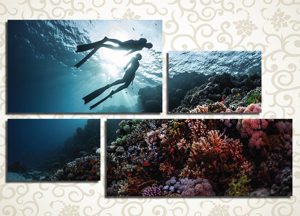 Модульная картина Дайвинг, коралловые рифы