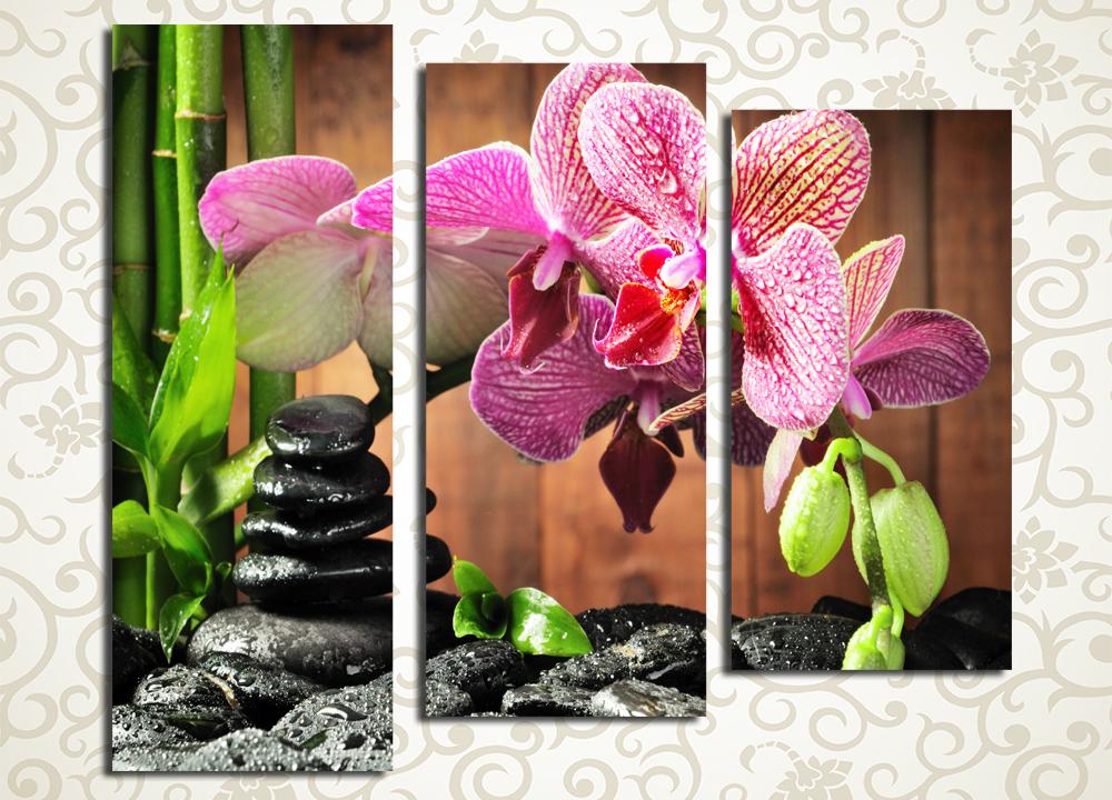 Модульная картина Орхидея с бамбуком