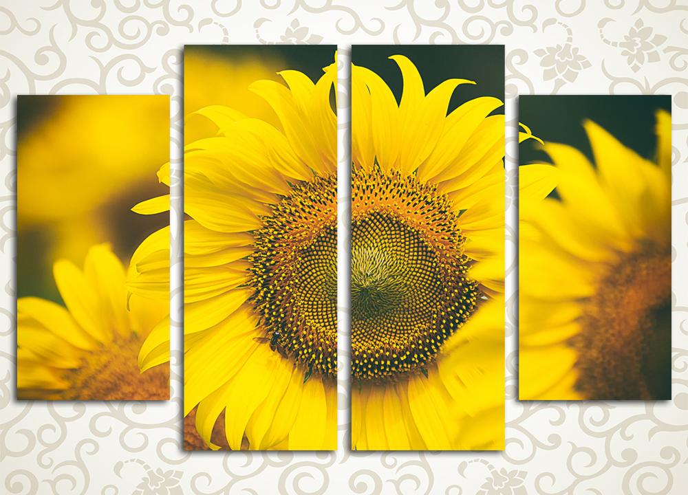 Модульная картина Солнечные цветы