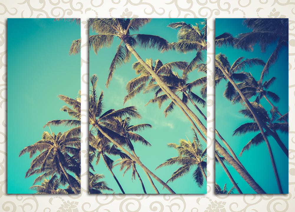Модульная картина Высокие пальмы