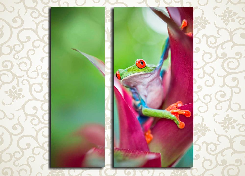 Модульная картина Любопытный лягушонок