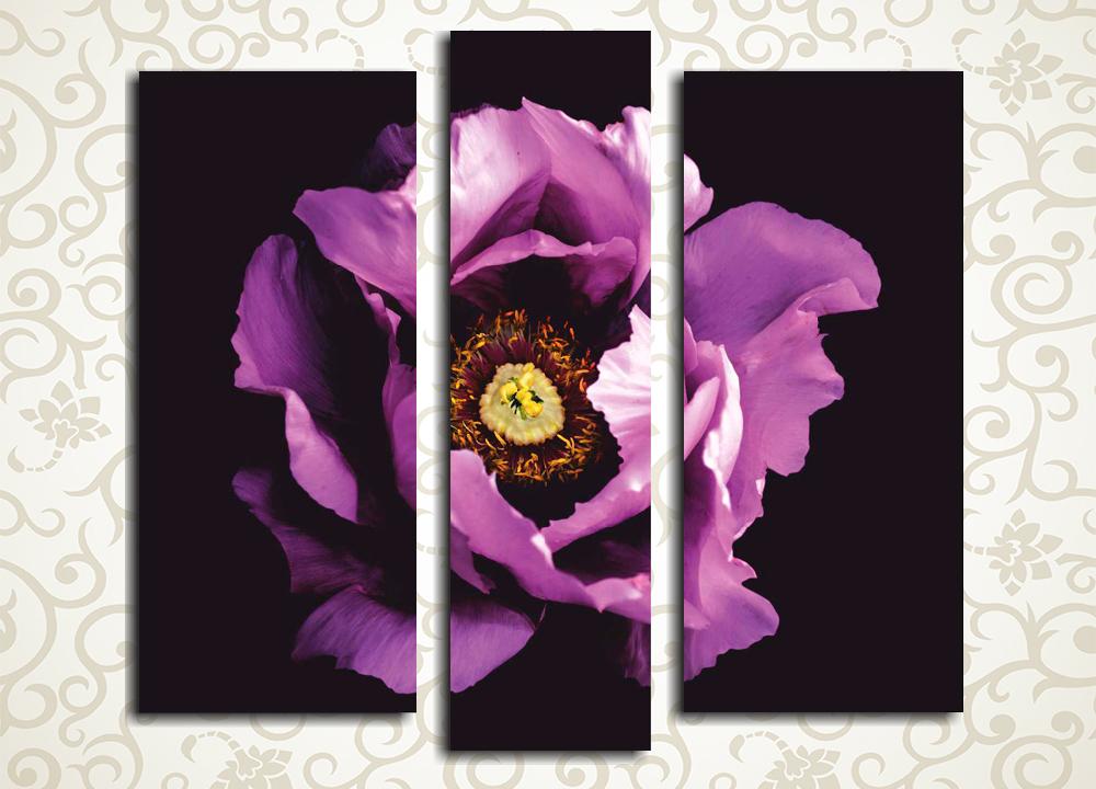 Модульная картина Сиреневая нежностьЦветы и фрукты<br>Модульная картина «Сиреневая нежность» изображает прекрасный распустившийся бутон цветка на темном фоне. Это полотно станет подлинным украшением дизайна прихожей, спальни, гостиной, зала, а также кухни и рабочего кабинета. Изображение состоит из 3 вертикальных модулей, каждый из которых собран на прочном сосновом каркасе и обтянут вручную холстом.<br>