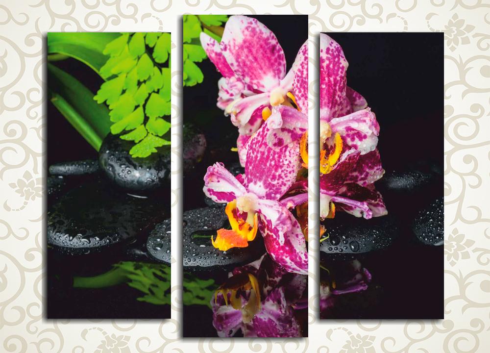 Модульная картина После дождяЦветы и фрукты<br>Модульная картина «После дождя» станет прекрасным дополнением интерьера прихожей, холла, гостиной, а также спальни. Полотно изображает орхидею на фоне спокойной водной поверхности и гладких камней. Оно производит ощущение спокойствия и уравновешенности. Изображение состоит из 3 вертикальных модулей. Каждый из них изготовлен на прочном сосновом каркасе и вручную обтянут холстом.<br>