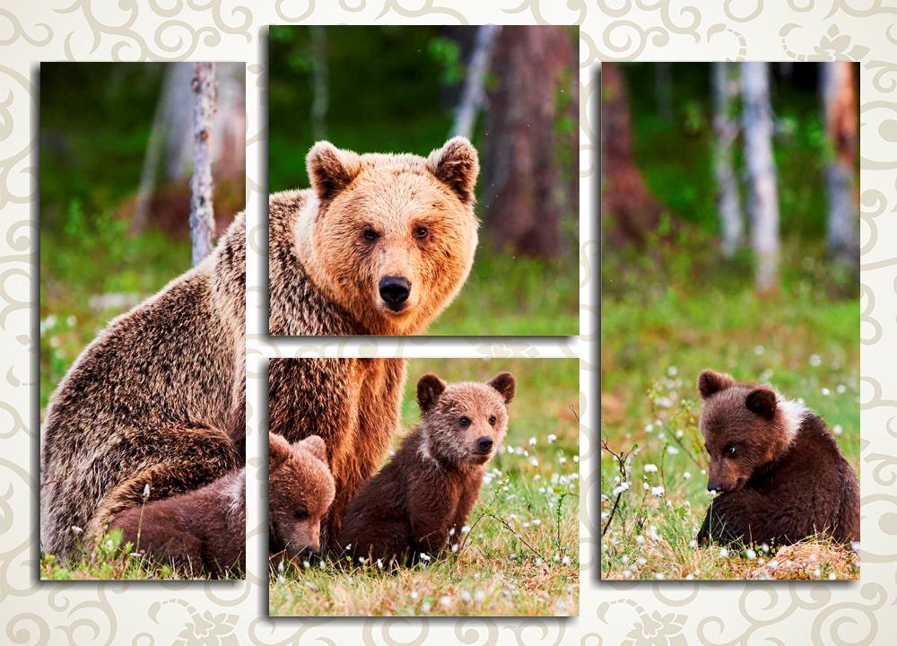 Модульная картина Мишки в лесуМодульная картина «Мишки в лесу» изображает медведицу с тремя медвежатами на цветущем лесном лугу в ясный день. Это полотно станет отличным выбором для украшения интерьера прихожей, детской спальни, гостиной, зала, а также рабочего кабинета. Изображение состоит из 4 модулей различной формы. Высокотехнологичные латексные краски не потеряют первозданной сочности палитры с годами.<br>