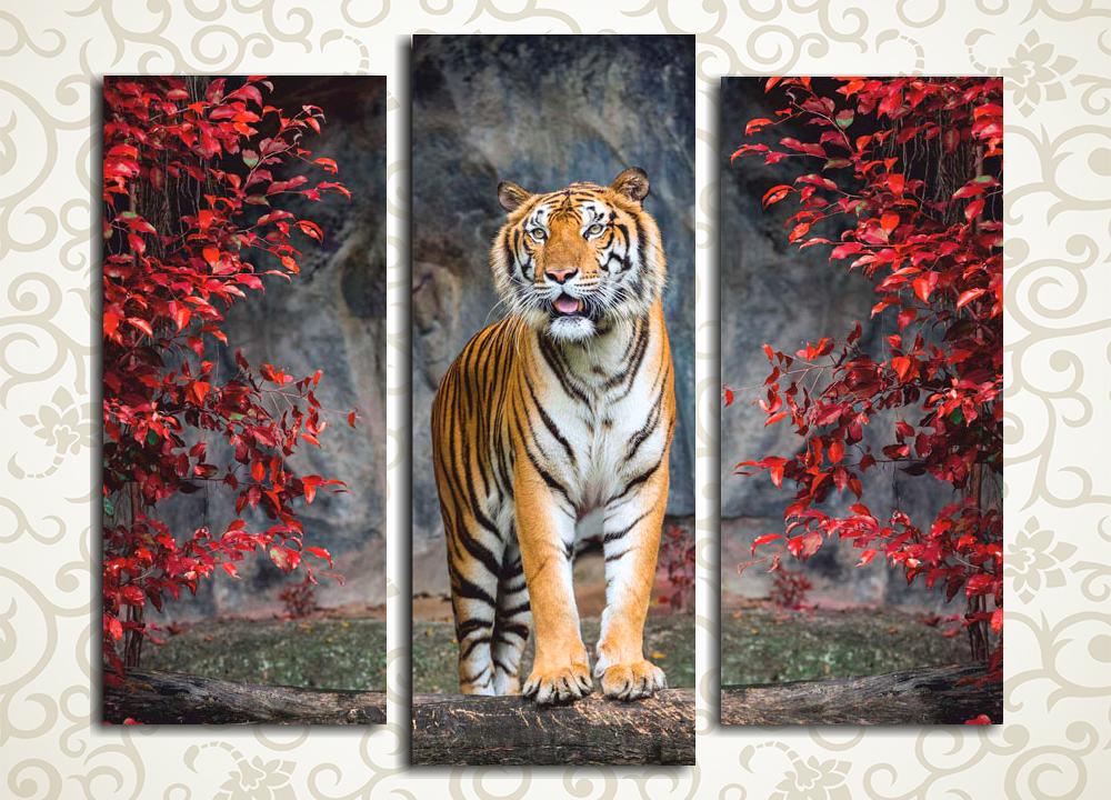 Модульная картина Король ДжунглейВеликолепный и гордый тигр, изображенный на модульной картине «Король джунглей», станет достойным украшением любого дома и подчеркнет независимый и благородный характер его хозяина. Амурский хищник изображен на фоне скалистого обрыва среди красных осенних листьев. Изображение состоит из 3 вертикальных модулей, изготовленных на прочном сосновом каркасе и вручную обтянутых холстом.<br>