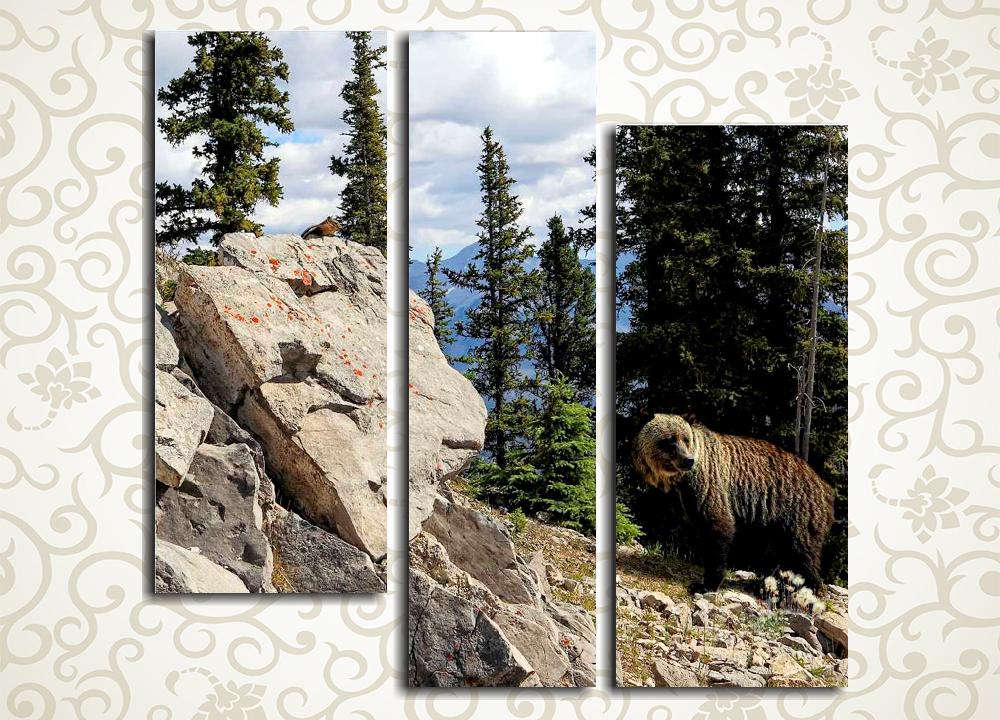 Модульная картина Медведь в лесу