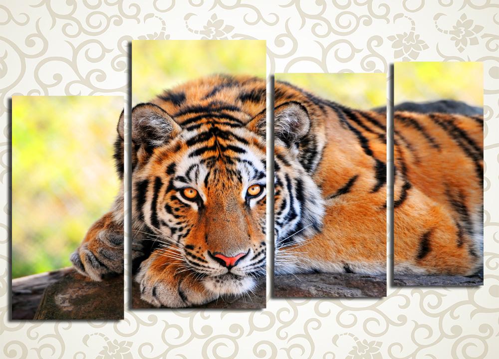 Модульная картина Тигр на отдыхе