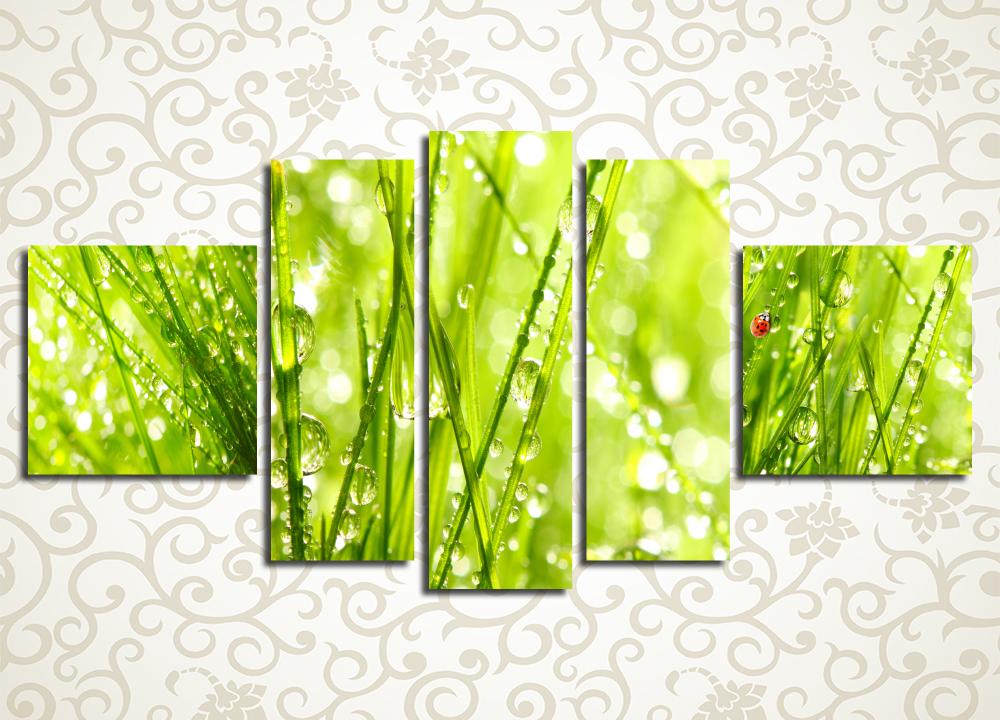 Модульная картина Роса на траве