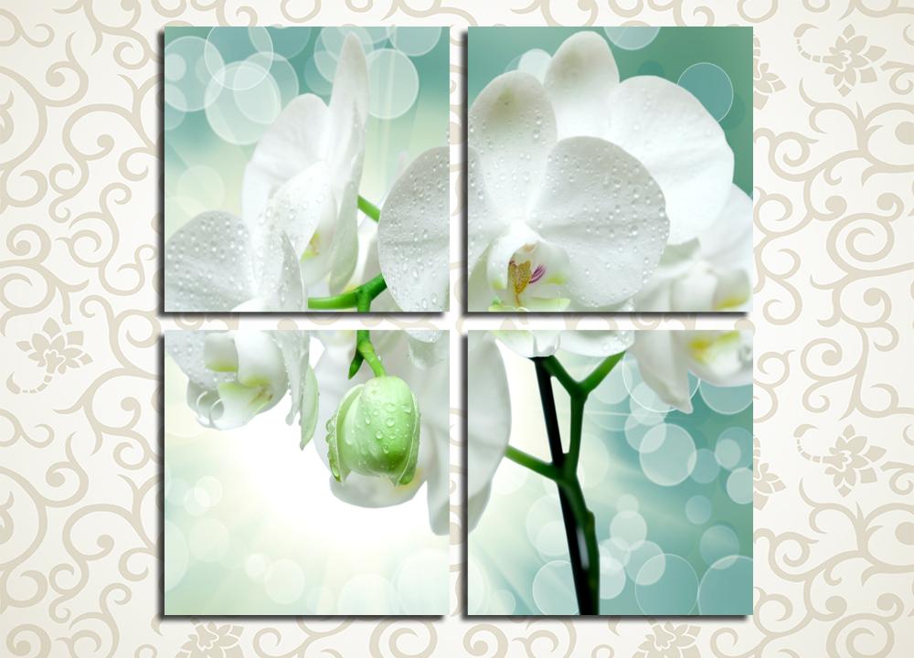 Модульная картина Очарование орхидеи