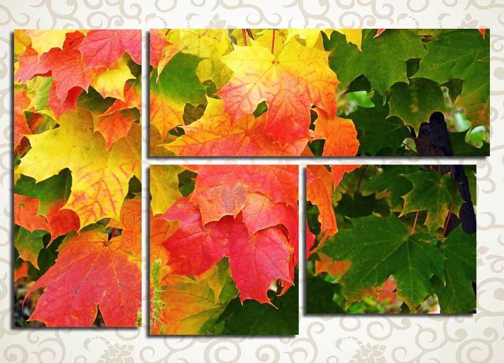 Модульная картина Осенний клен