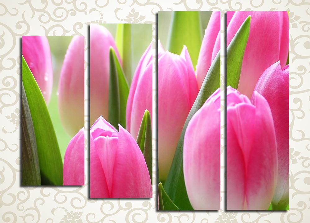 Модульная картина Тюльпаны в утреннем свете