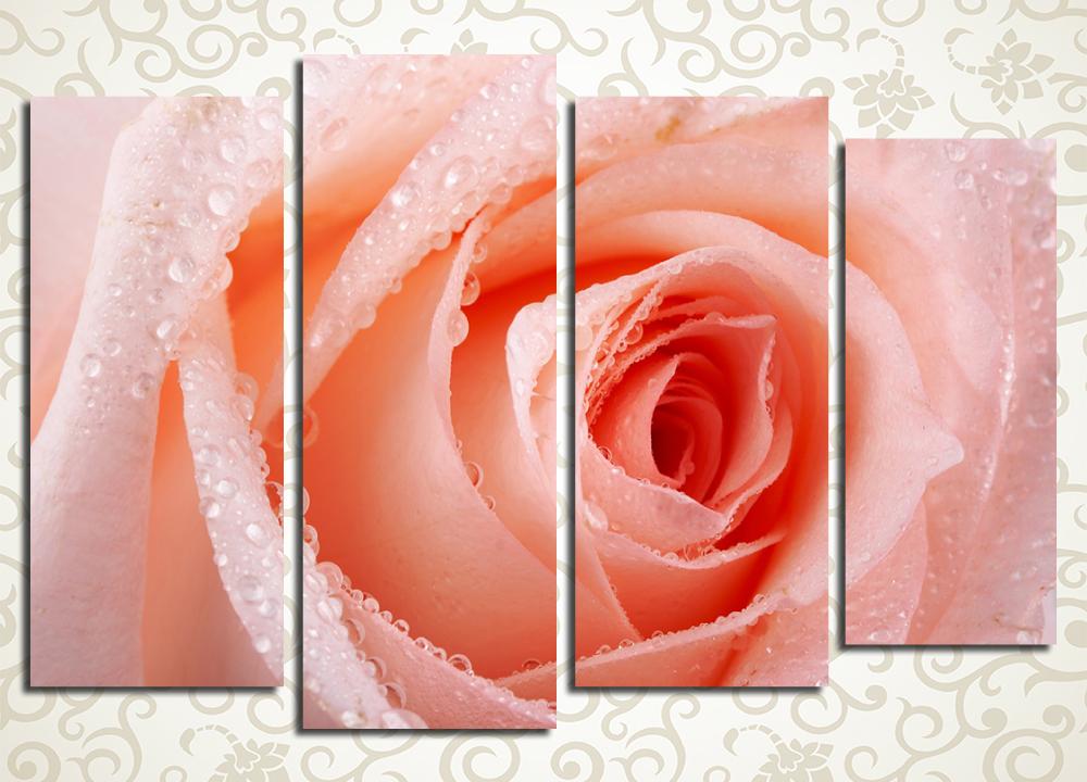 Модульная картина Нежный бутон розы