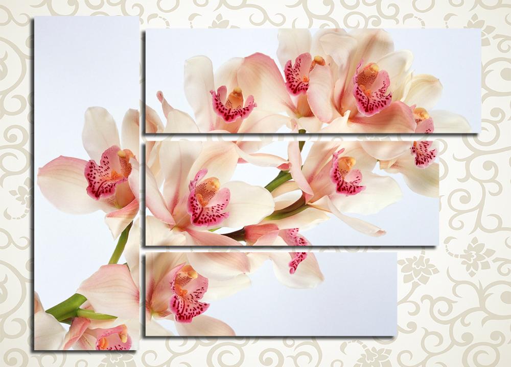 Модульная картина Экзотический цветокЦветы и фрукты<br>Нежность и стиль являются лейтмотивом модульной картины «Экзотический цветок», представленной в каталоге нашего магазина. Эта картина привлекает внимание своей необычной компоновкой 4 модулей. Такой оригинальный способ расположения блоков значительно освежит интерьер, а также станет своеобразным акцентом в помещении. Изображение нежной кремовой орхидеи на фоне чистого неба подойдет для любых комнат — от спальни до прихожей, а спокойные тона создадут в атмосфере ощущение домашнего уюта и безмятежности. Картина выполнена на холсте особыми латексными красками, обладающими высокой стойкостью и долговечностью.<br>
