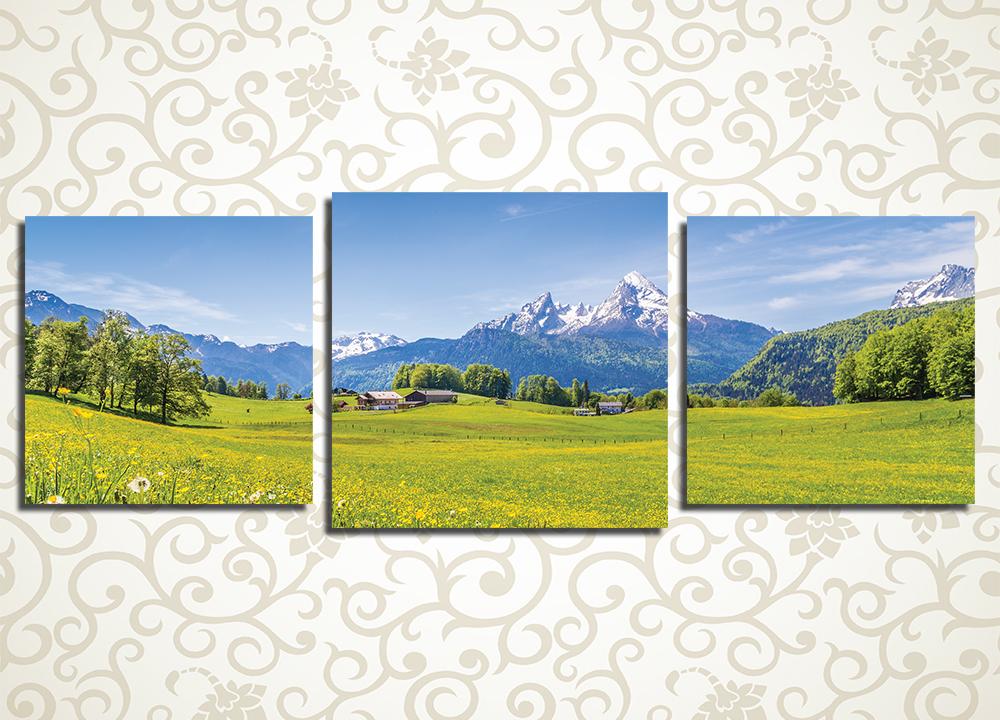 Модульная картина Лето в Альпах