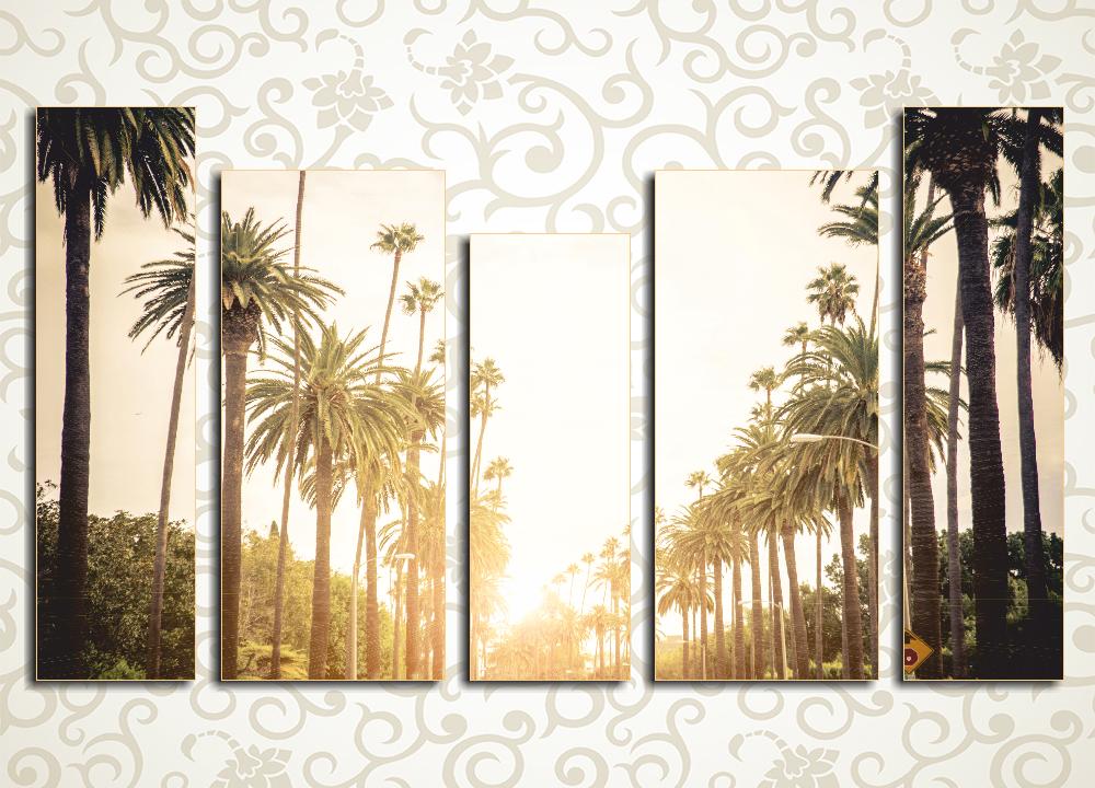 Модульная картина Пальмы в лучах солнца