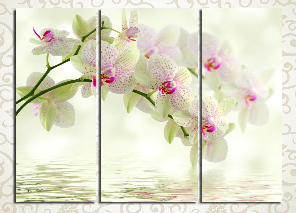 Модульная картина Ветка орхидеи у воды