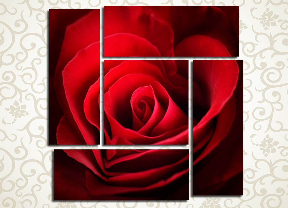 Модульная картина Сердечная розаЦветы и фрукты<br><br>