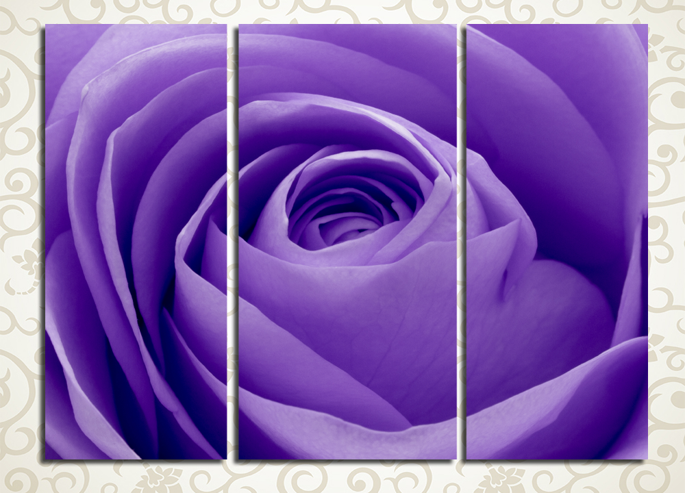Модульная картина Волшебный бутон розы
