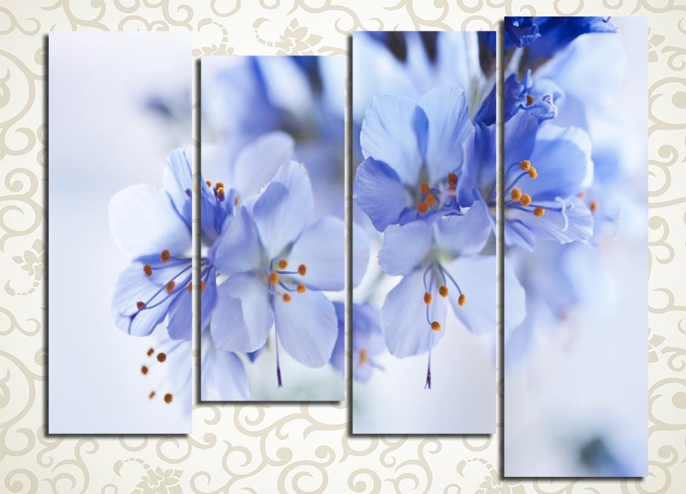 Модульная картина Голубая прелесть
