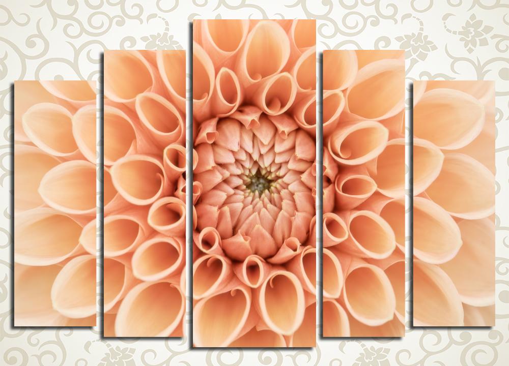 Модульная картина Персиковая гербера