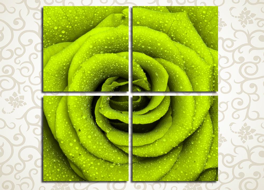 Модульная картина Роза цвета лайма
