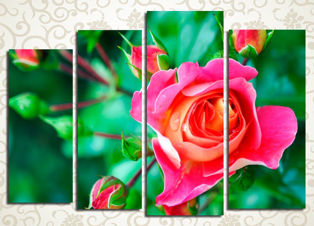 Модульная картина Яркий бутон розы