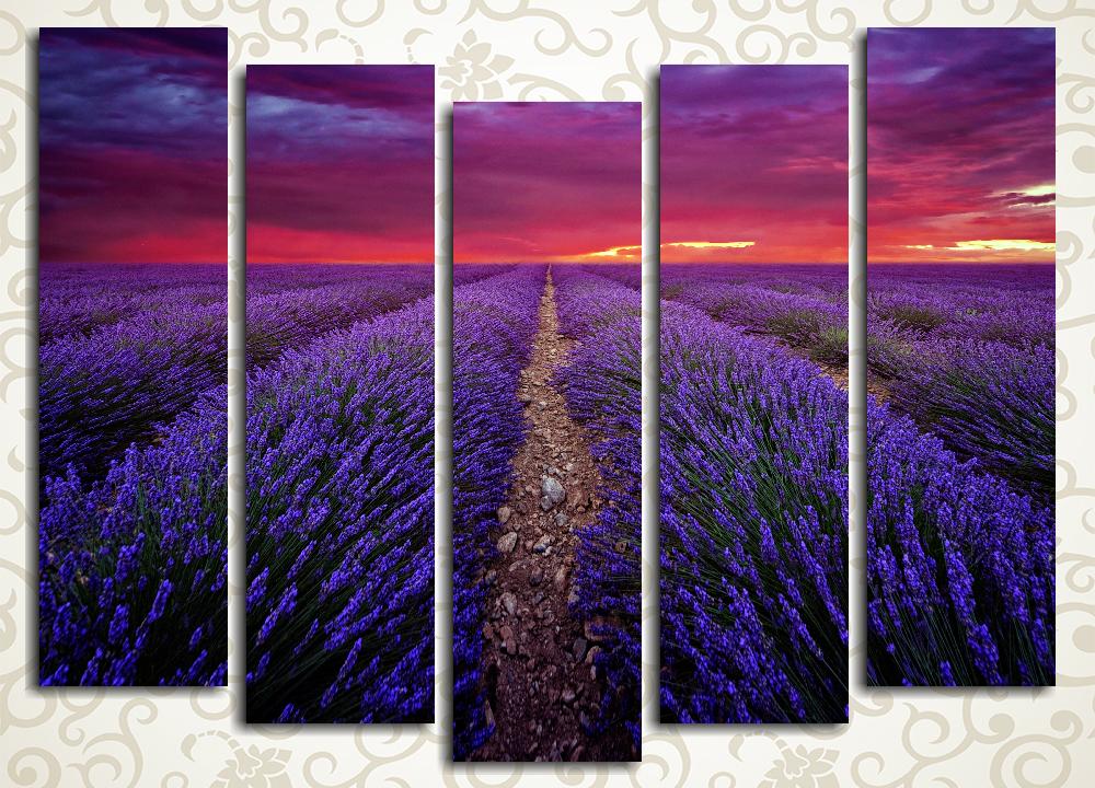 Модульная картина Закат над лавандовым полем