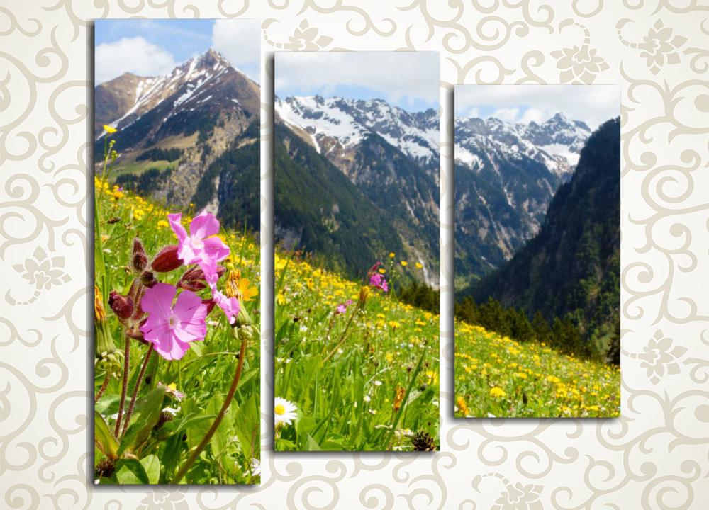 Модульная картина Великолепие пейзажа Альп
