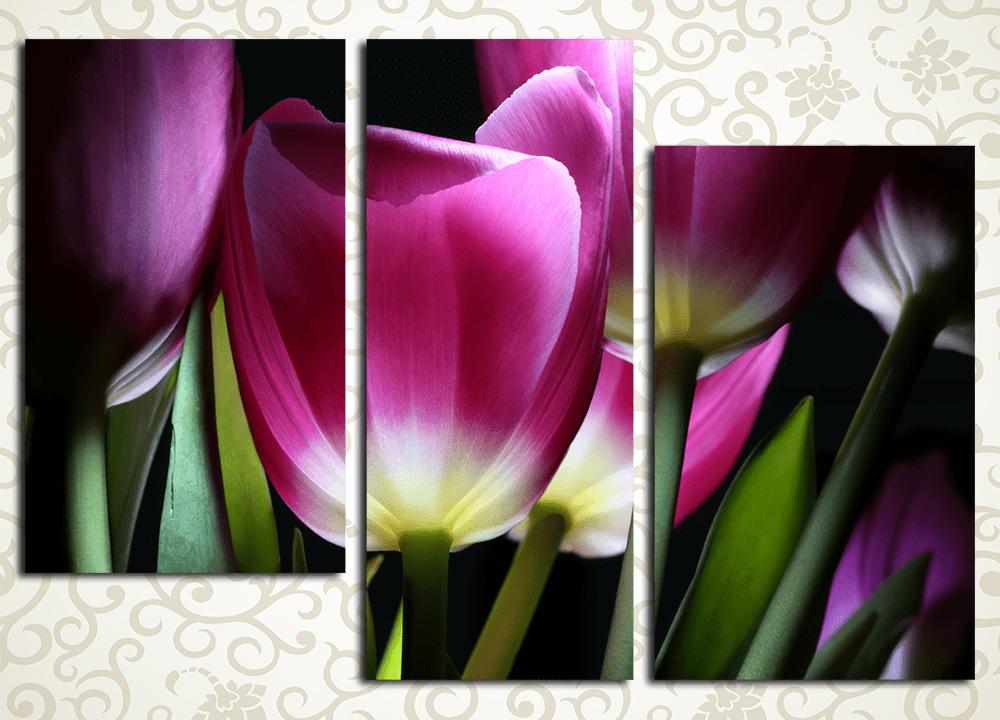 Модульная картина Волшебные тюльпаны