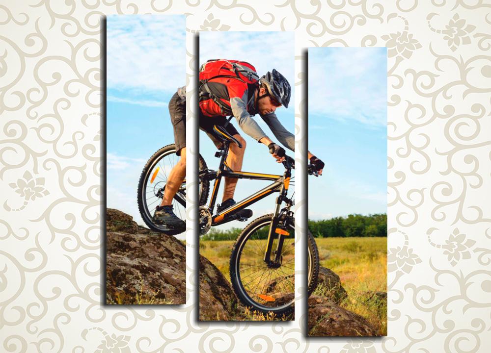 Модульная картина Велосипедист