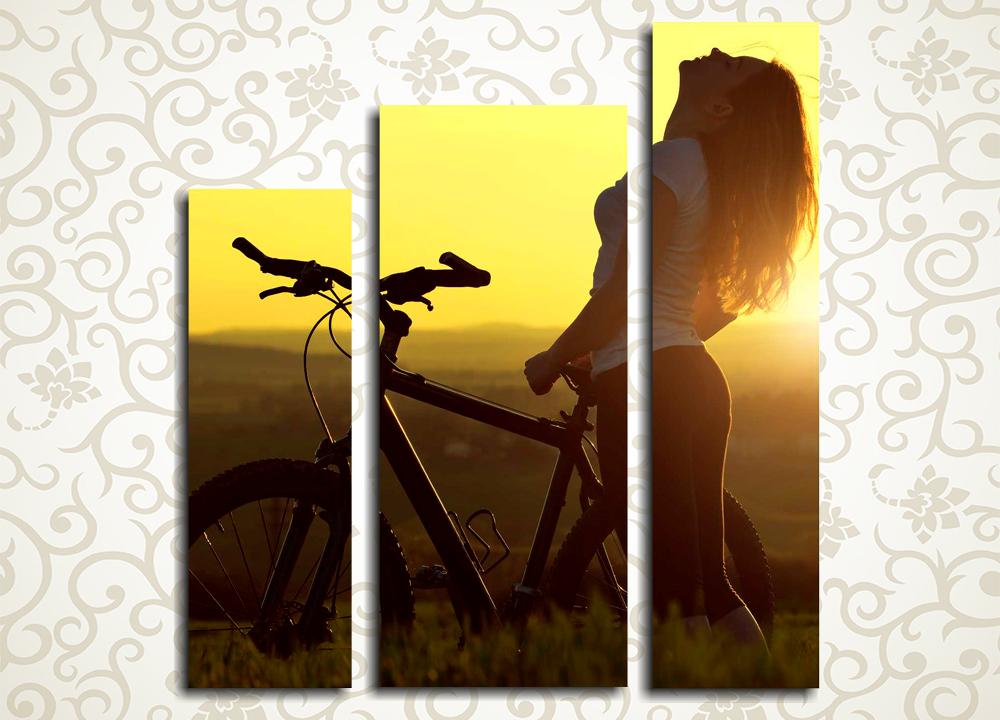 Модульная картина Девушка с велосипедом