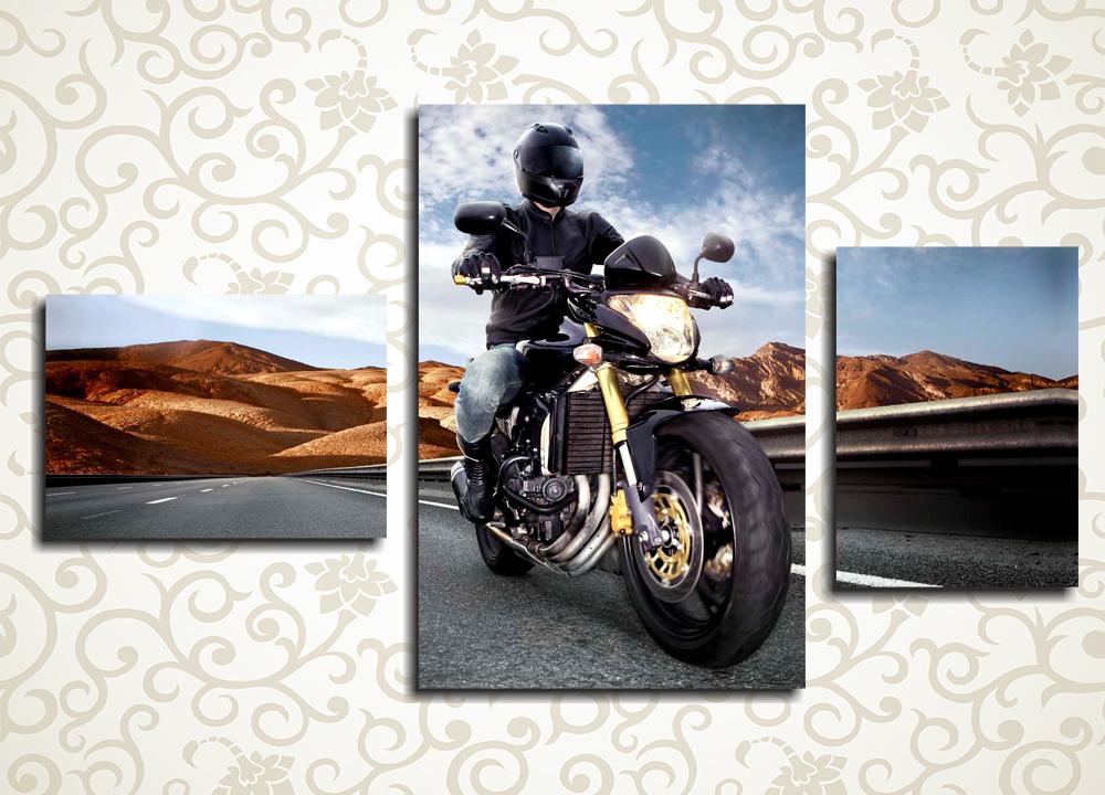 Модульная картина Мотоциклист<br>