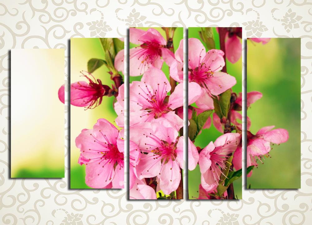 Модульная картина Яркие цветы сакуры