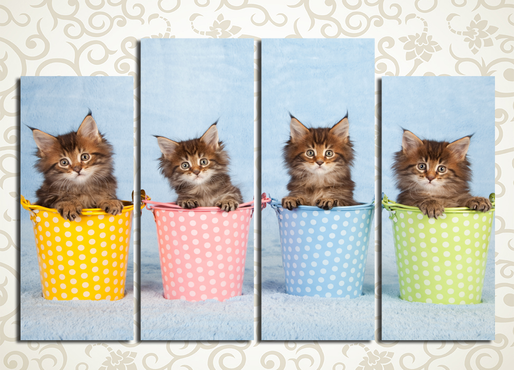 Модульная картина Котята в разноцветных ведерках