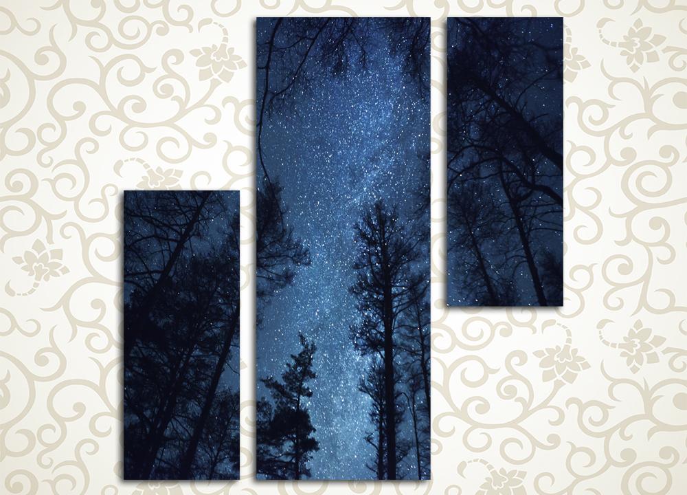 Модульная картина Ночь в лесу