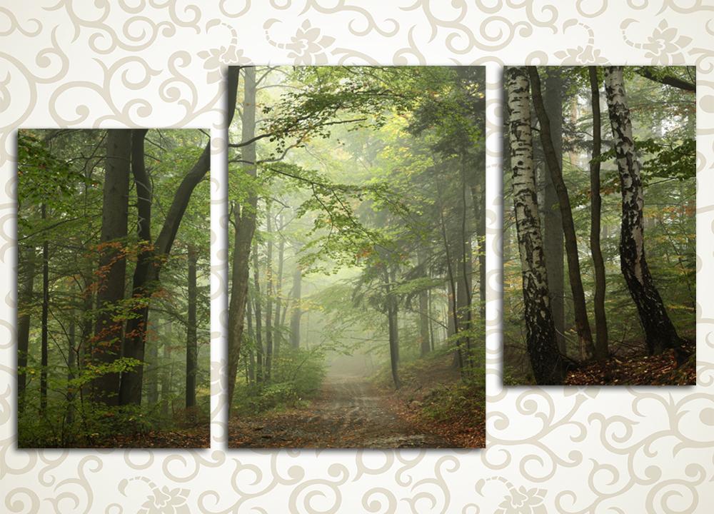 Модульная картина Туманный лес