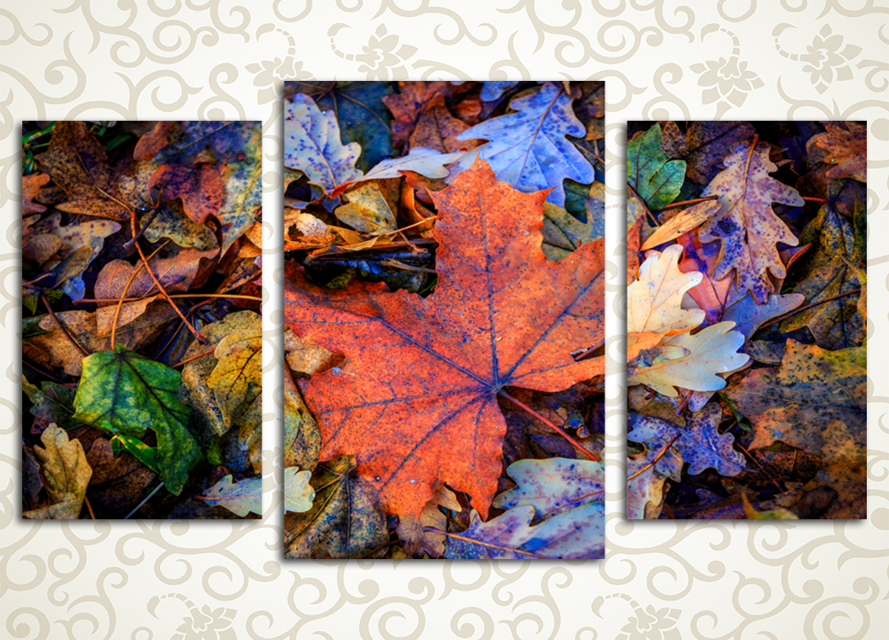 Модульная картина Осенний ковер
