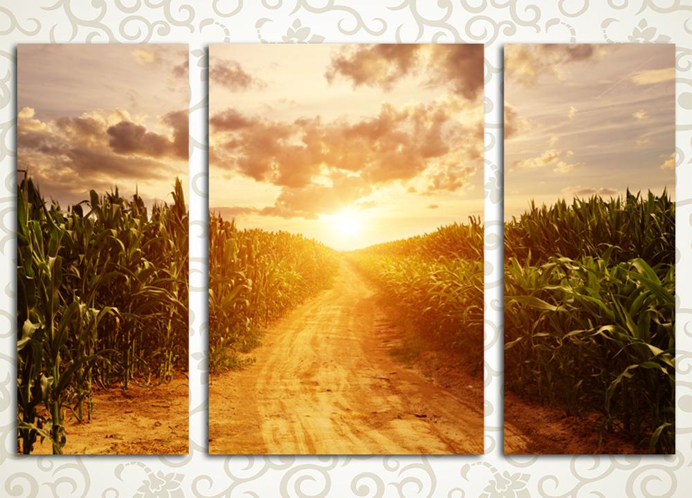 Модульная картина Кукурузное поле
